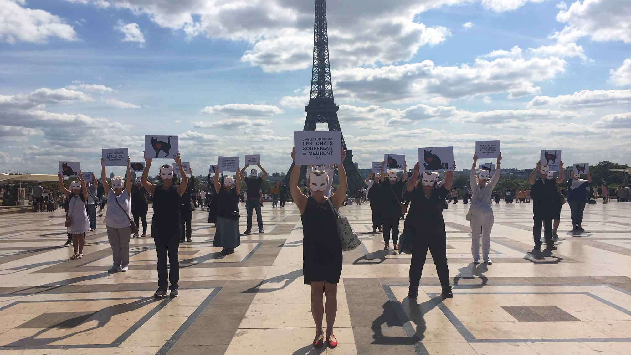 Happening pour défendre les chats libres à Paris