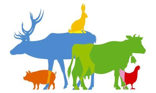 ECA soutient le référendum pour les animaux
